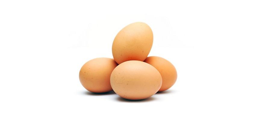 Huevos Frescos de Payés MEDIANOS